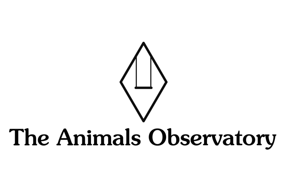 The-Animals-Observatory